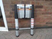 batavia telescopic ladders