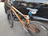 Giant Mountain Bike Limited Edition