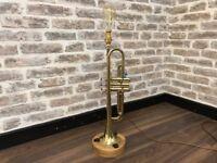 Re-purposed Corton 80 Trumpet Lamp