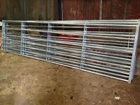 **Brand New** Galvanised Farm / Field Galvanised Gates by Bateman (Century Gates