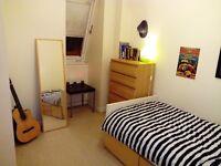 Sigle room in spacious duplex.