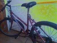 £30 · Mountain Bike to sell