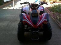 Aeon cobra 180 cc