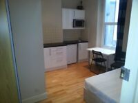 Modern and Spacious Studio in Brixton - Must See!