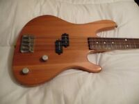 Washburn Electric Bass Guitar and Peavey Bass Combo Practise Amplifier