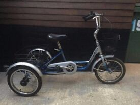 Mission 20 inch Children's or Adult's Trike / Tricycle