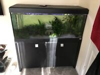4ft fish tank with all accessories and stand