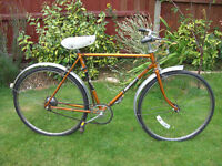 RALEIGH ESQUIRE COMMUTER ONE OF MANY QUALITY BICYCLES FOR SALE