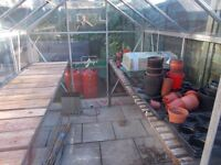 FULLY WORKING GREENHOUSE WITH TABLES FOR SALE 8X6
