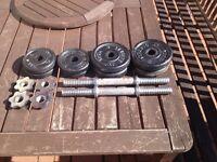 york 20kg cast iron dumbbells