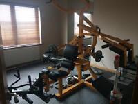 Multi-gym Powertec workbench with treadmill Newry