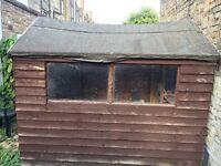 Windowed Single Door Garden shed - 8x6ft