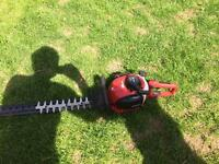 Einhell hedge cutter