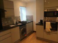 Large 2 Bedroom Flat for rent, Furnished ,