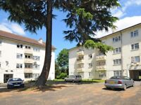 3/4 Bed Flat in on Kingston Hill for Students or professionals