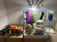 Ciano 22 litre fish tank perfect working order comes with everything pictured