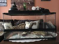 Exo - Terra vivarium large, with accessories