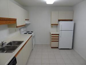 Beautiful 1 & 2 Bedroom Suites - Ask about our Incentives! Kitchener / Waterloo Kitchener Area image 6