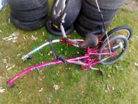 Tag along bikes pair