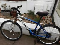 Probike Blizzard mountain bike