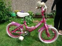 Small Child girl bike