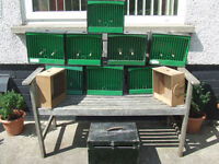 British Finch show cages,10 in total