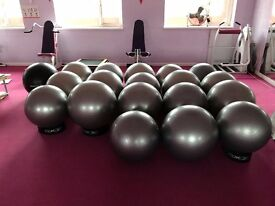 Exercise Balls for Sale!