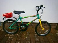 Boy's Raleigh Bicycle