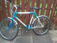 "adult youth gents MOUNTAIN BIKE 21""FRAME 26""WHEELS 15 SPEED TIDY"