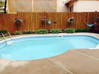 Room for Rent in north end/POOL!