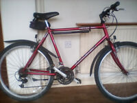 RALEIGH RED ROCK BICYCLE, IN FULL WORKING ORDER