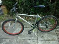 Silver and red mountain bike