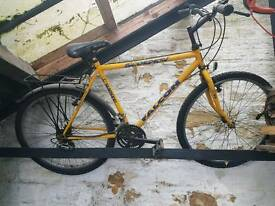 BIKE FOR SALE CHEAP !