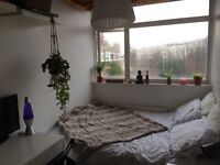 Double room in all female house near brick lane