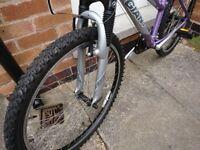 Giant Rock 17 inch frame mountain bike