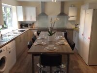 SB Lets are delighted to offer a double room to rent in beautiful house share in a lovely location