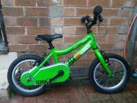 childrens ridge back bike