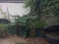 Garden tubs plastic FREE