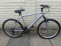 ladies 20in apollo bike ready to ride new d-lock available can deliver