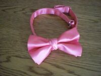 Coral coloured bow tie