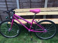 """LADIES WOMANS ADULTS APOLLO PULSE 24"""" WHEEL 15"""" FRAME 15 SPEED PINK BIKE BICYCLE"""