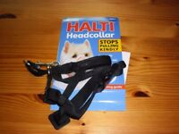 NEW HALTI HEAD COLLAR