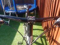 2009 trek moutain bike £80