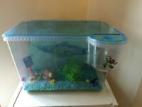 Finding Nemo 3D tank with matching ornaments and matching gravel