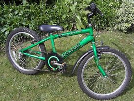 Childs Raleigh Max Mountain Bike