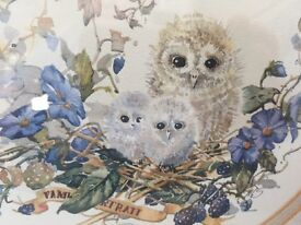 Owl print picture and frame