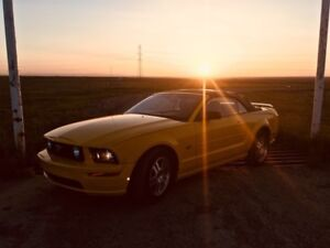 2005 Convertible Ford Mustang Low Km