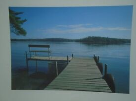 Bench on a lake - framed print
