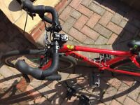 "Frog 67 Red Bike 24"" wheel excellent condition"
