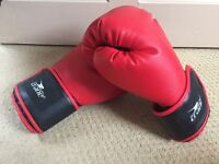 Crane Boxing Gloves